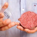 배양육, 식물성 고기를 뛰어넘는 새로운 푸드 테크