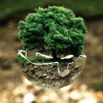 [칼럼] 기후위기는 정말로 존재하는 것일까